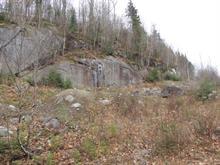 Terre à vendre à Sainte-Agathe-des-Monts, Laurentides, Chemin  Brunet, 27250947 - Centris