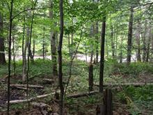 Lot for sale in Brownsburg-Chatham, Laurentides, Montée  Silverson, 24653365 - Centris