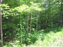 Terrain à vendre à Val-des-Monts, Outaouais, 48, Rue de l'Impasse, 10700862 - Centris