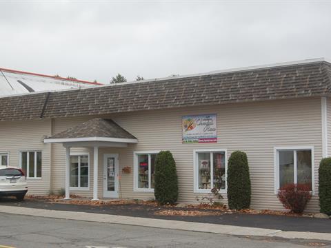 Commerce à vendre à Plessisville - Ville, Centre-du-Québec, 1525, Avenue  Vallée, 18080814 - Centris