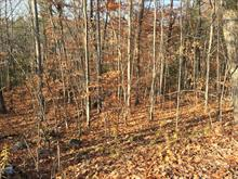 Lot for sale in Cantley, Outaouais, Rue d'Oslo, 18193432 - Centris