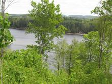 Lot for sale in Lac-Simon, Outaouais, 4e Rang Sud, 12048417 - Centris