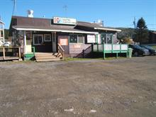 Bâtisse commerciale à vendre à Causapscal, Bas-Saint-Laurent, 391, Rue  Saint-Jacques Nord, 24814867 - Centris