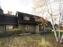 Maison à vendre à Mont-Tremblant, Laurentides, 175, Chemin des Cerfs, 19508739 - Centris