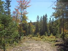 Lot for sale in Val-David, Laurentides, Rue du Cerf, 13661089 - Centris