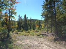 Lot for sale in Val-David, Laurentides, Rue du Cerf, 13373661 - Centris