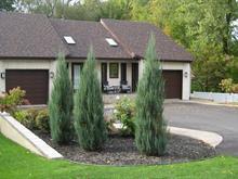 House for sale in Mont-Saint-Hilaire, Montérégie, 993, Chemin des Patriotes Nord, 26345140 - Centris