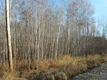 Lot for sale in Rouyn-Noranda, Abitibi-Témiscamingue, Rang  Quai, 12761909 - Centris