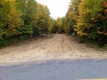 Terre à vendre à Lac-Supérieur, Laurentides, Chemin du Lac-Lauzon, 11988038 - Centris
