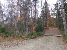 Lot for sale in Wentworth-Nord, Laurentides, Chemin  Lobel, 10033251 - Centris