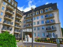 Condo / Apartment for rent in Hull (Gatineau), Outaouais, 105, Rue du Château, apt. 402, 14114082 - Centris