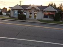 Bâtisse commerciale à vendre à Sainte-Anne-des-Plaines, Laurentides, 234 - 236, boulevard  Sainte-Anne, 23061247 - Centris