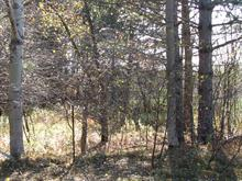 Lot for sale in Rock Forest/Saint-Élie/Deauville (Sherbrooke), Estrie, Chemin  Édouard-Roy, 16948290 - Centris
