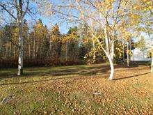 Lot for sale in Chandler, Gaspésie/Îles-de-la-Madeleine, Rue des Sarcelles, 26694419 - Centris