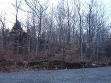 Lot for sale in Saint-Adolphe-d'Howard, Laurentides, Chemin du Renard, 22183853 - Centris