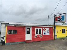Commercial building for sale in Saint-Hilarion, Capitale-Nationale, 238, Chemin  Cartier, 12931546 - Centris