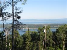 Lot for sale in Baie-Saint-Paul, Capitale-Nationale, 108, Chemin du Domaine-Charlevoix, 23868796 - Centris