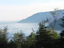 Lot for sale in Baie-Saint-Paul, Capitale-Nationale, 152, Chemin du Domaine-Charlevoix, 24322025 - Centris