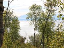 Lot for sale in Les Éboulements, Capitale-Nationale, 140, Chemin du Domaine-Charlevoix, 23410460 - Centris