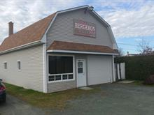 Commercial building for sale in Brompton (Sherbrooke), Estrie, 370, Rue  Saint-Lambert, 23092264 - Centris