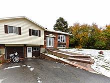 House for sale in Gatineau (Gatineau), Outaouais, 458, Rue de Cannes, 15674143 - Centris