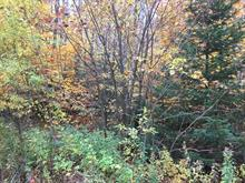 Lot for sale in Bolton-Est, Estrie, 3, Rue du Lac-Deer, 16483543 - Centris