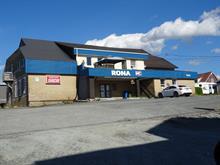 Bâtisse commerciale à vendre à East Broughton, Chaudière-Appalaches, 263, Avenue  Notre-Dame, 15677023 - Centris