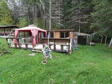 Immeuble à revenus à vendre à Gracefield, Outaouais, 7, Chemin de la Traverse-Bénard, 27700543 - Centris