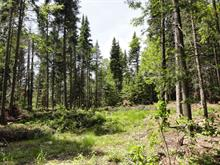 Lot for sale in Val-David, Laurentides, Rue du Cerf, 11274043 - Centris
