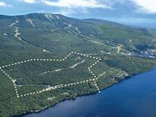 Terrain à vendre à Mont-Tremblant, Laurentides, Chemin des Skieurs, 21461967 - Centris