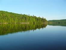 Lot for sale in Ferme-Neuve, Laurentides, Chemin du Lac-Major, 24050923 - Centris