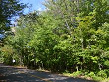 Lot for sale in Saint-Damien, Lanaudière, Chemin  Robitaille, 22355877 - Centris