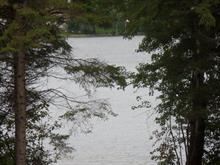 Lot for sale in Notre-Dame-du-Laus, Laurentides, Chemin de Val-Ombreuse, 11976535 - Centris