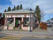 Commercial building for sale in Sainte-Agathe-des-Monts, Laurentides, 116, Rue  Principale Est, 11449631 - Centris