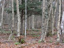 Lot for sale in Harrington, Laurentides, Chemin de Maple Wood, 22210934 - Centris