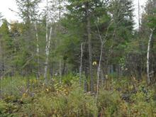 Lot for sale in Saint-Romain, Estrie, 519, Route  263, 16689132 - Centris