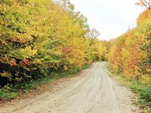 Terrain à vendre à Saint-Faustin/Lac-Carré, Laurentides, Chemin des Lupins, 27293685 - Centris