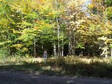 Lot for sale in Orford, Estrie, Chemin  Simoneau, 18398255 - Centris