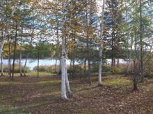 Lot for sale in Lamarche, Saguenay/Lac-Saint-Jean, 11, Pointe  Simard, 12714529 - Centris