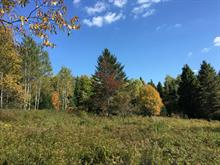 Lot for sale in Morin-Heights, Laurentides, 2e Rang, 25989775 - Centris