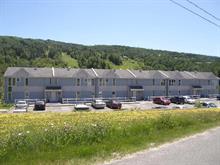 Condo à vendre à Saint-Malachie, Chaudière-Appalaches, 203, Chemin de la Montagne, 11282941 - Centris