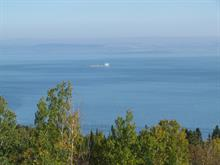 Lot for sale in La Malbaie, Capitale-Nationale, boulevard  Malcolm-Fraser, 16820918 - Centris