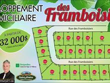 Terrain à vendre à Saint-Arsène, Bas-Saint-Laurent, 102, Rue des Framboisiers, 17132077 - Centris