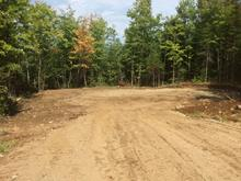 Lot for sale in Mandeville, Lanaudière, Ancien ch. du Lac-Sainte-Rose, 20294853 - Centris