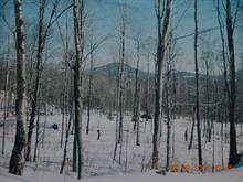 Land for sale in Potton, Estrie, Chemin  White, 25978348 - Centris