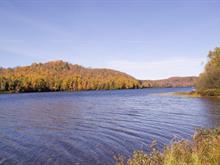 Terrain à vendre à Lac-des-Plages, Outaouais, Chemin du Lac-de-la-Carpe, 21999567 - Centris