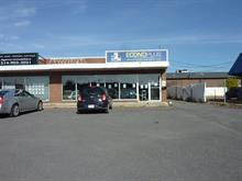 Bâtisse commerciale à vendre à LaSalle (Montréal), Montréal (Île), 2051, Rue  Thierry, 21831630 - Centris
