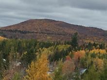 Terre à vendre à Charlesbourg (Québec), Capitale-Nationale, 203, Rue  Audubon, 22665327 - Centris