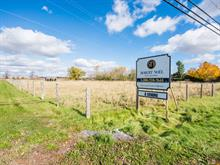 Lot for sale in Lacolle, Montérégie, Montée  Van-Vliet, 11043062 - Centris
