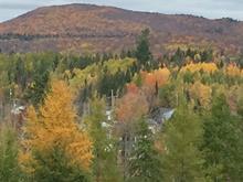 Terre à vendre à Charlesbourg (Québec), Capitale-Nationale, 202, Rue  Audubon, 28932844 - Centris